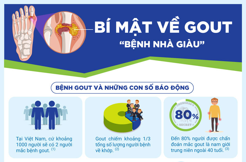 chỉ số bệnh gout VN