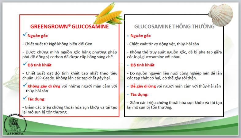 greengrow glucosamin công dụng ngô so sánh